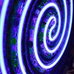 nikki-ella-whitlock-closeup-blue-light-glow-240